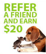 Refer a friend get $20